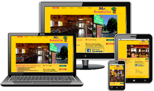 Mr tequila Web Design